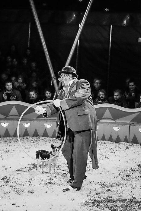 Zirkus-15-8.jpg